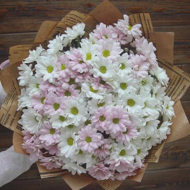 Облачко хризантем