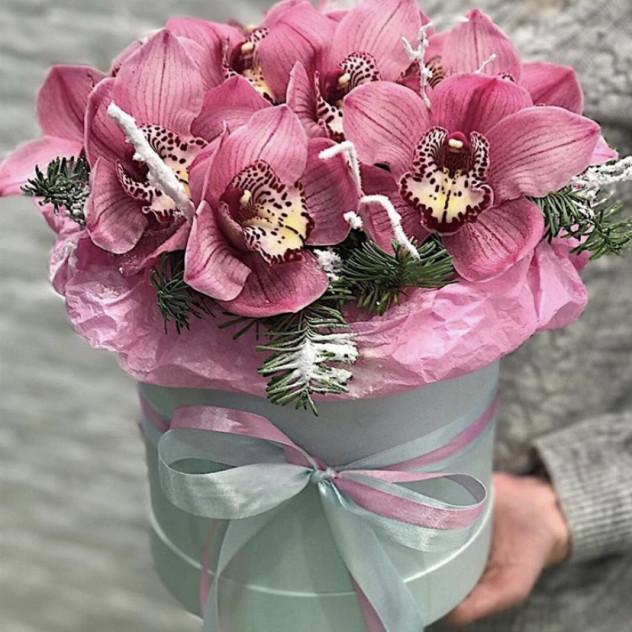 «Снежная орхидея»